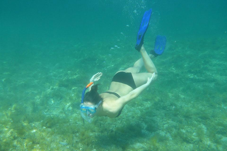 Imagen de Snorkel en Zahara